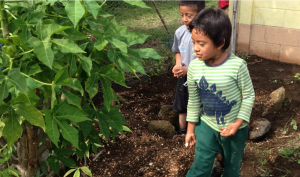 Pre school planting seeds